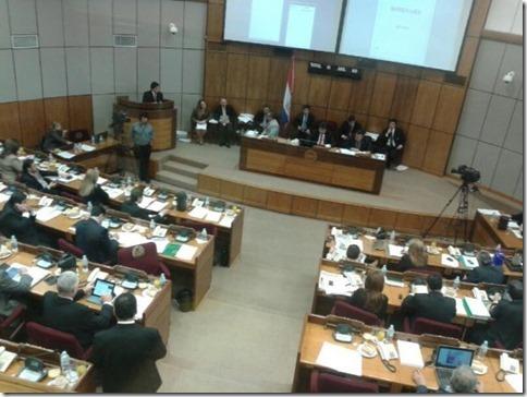 plenaria-de-la-camara-de-senadores-_595_446_1075731_thumb[1]